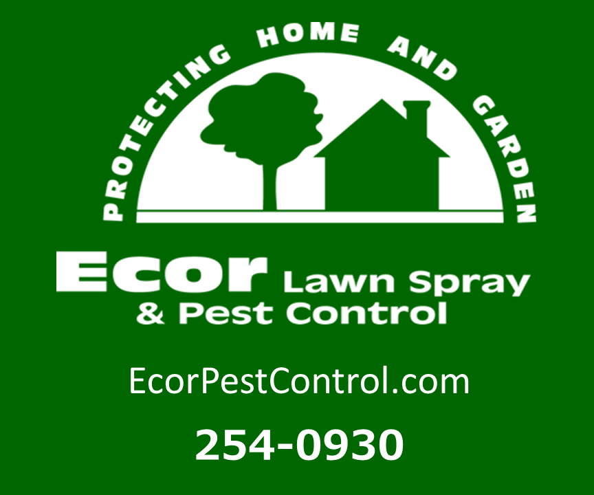 http://ecorpestcontrol.com/contact