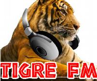 http://www.tigrecolorado.com/